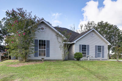 Vermilion Parish Single Family Home For Sale: 3293 Broadview Drive