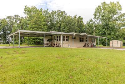 Carencro Single Family Home For Sale: 420 Magnolia Farms Road