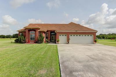 St Martinville, Breaux Bridge, Opelousas Single Family Home For Sale: 895 Dufilho Road