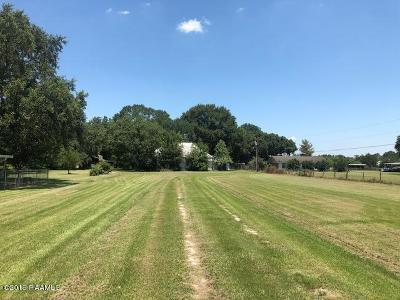 Church Point Single Family Home For Sale: 2445 Peach Bloom
