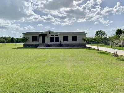 Carencro  Single Family Home For Sale: 203 Tournament Drive