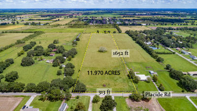 Farm For Sale: Tbd Placide Road