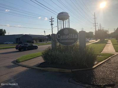 Lafayette Rental For Rent: 326 Guilbeau Road #121
