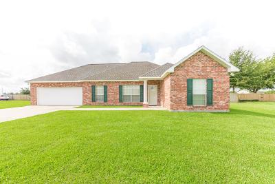 Vermilion Parish Single Family Home For Sale: 13091 La Hwy 92