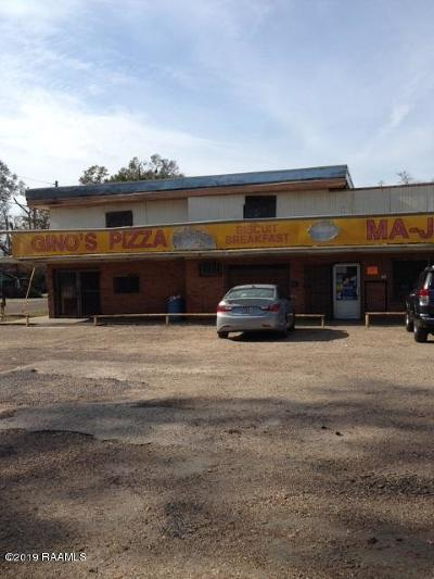 St Landry Parish Commercial For Sale: 813 Hwy 749