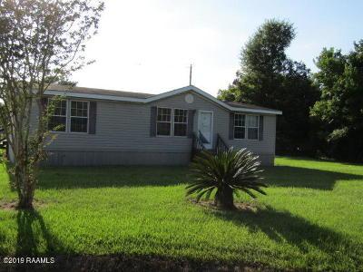 Single Family Home For Sale: 209 Mossy Oak Street