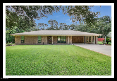 Single Family Home For Sale: 1020 Mable Lane