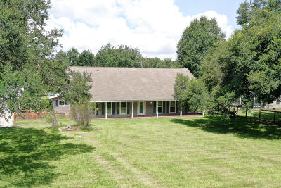 Carencro Single Family Home For Sale: 255 Magellan Road