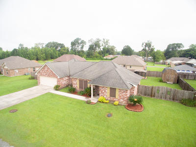 Single Family Home For Sale: 142 Squirrel Lane