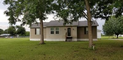 Ville Platte Single Family Home For Sale: 1053 Fig Street