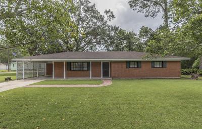 Jeanerette Single Family Home For Sale: 308 Roland Lane