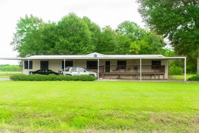 Opelousas Single Family Home For Sale: 350 Collins Road