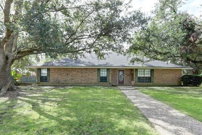 Single Family Home For Sale: 1817 Gay Drive