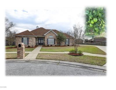 Lafayette  Single Family Home For Sale: 105 Journey Lane