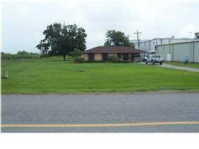 Iberia Parish Commercial Lots & Land For Sale: 804 W Hwy 90