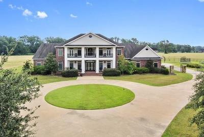 Alexandria Single Family Home For Sale: 5010 Plantation Road