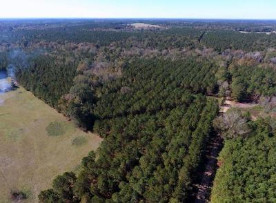 Residential Lots & Land For Sale: McLain Road