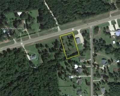 Residential Lots & Land For Sale: 1.037 Ac Hwy 28 E