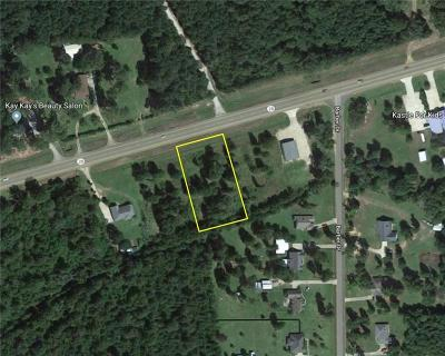 Residential Lots & Land For Sale: 1.058 Ac Hwy 28 E