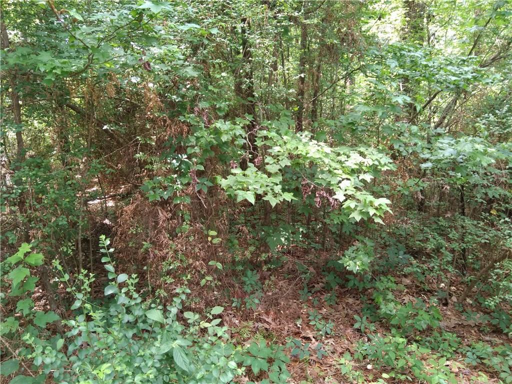 0 51 acres in Colfax for $15,000