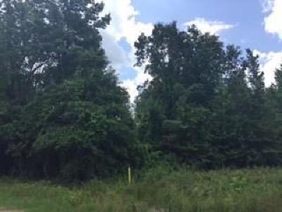 Residential Lots & Land For Sale: 00 Randall Loop