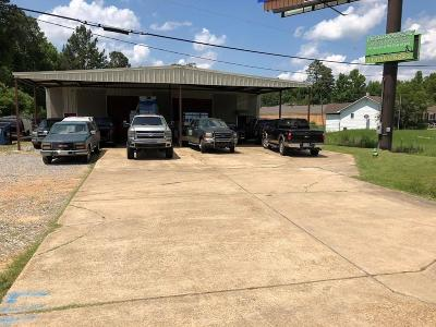 Commercial For Sale: 4917 Hwy 28 E