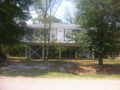 Single Family Home For Sale: 209 Pecan Drive