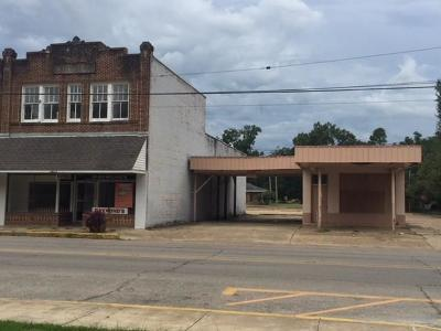 Commercial For Sale: 317 North Main Street