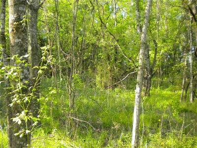 Residential Lots & Land For Sale: 1830 Mammy Trail