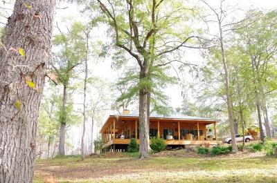 Single Family Home For Sale: 249 Gator Hole Road