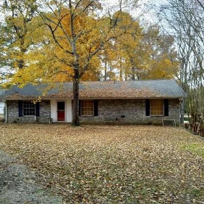 Single Family Home For Sale: 105 Lynell Lane