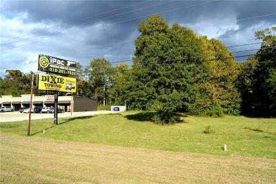 Commercial For Sale: Hwy 165 N