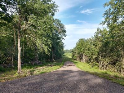 Residential Lots & Land For Sale: 4305 Hwy. 507
