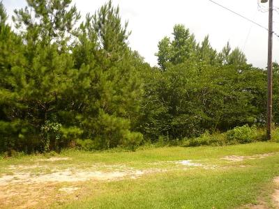 Residential Lots & Land For Sale: Homer Street