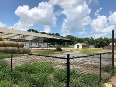 Residential Lots & Land For Sale: 5516 Masonic Drive