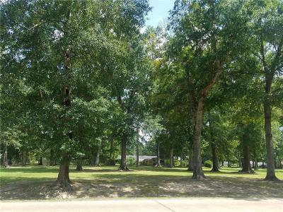 Residential Lots & Land For Sale: 1110 E 5th Avenue