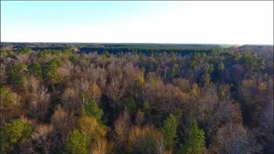 Residential Lots & Land For Sale: 00 White Sulphur Springs