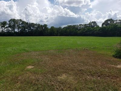 Residential Lots & Land For Sale: Olive St