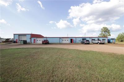 Commercial For Sale: 420 Tioga High Road
