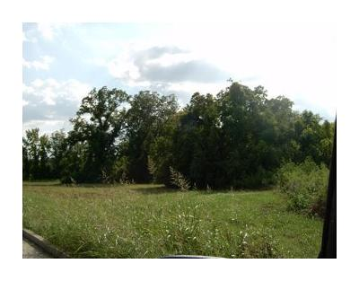 Residential Lots & Land For Sale: 6117 West Calhoun Drive
