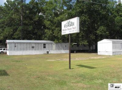 Monroe Multi Family Home For Sale: 4414 Winnsboro Road