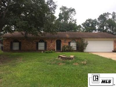 Monroe Single Family Home For Sale: 69 Holiday Drive