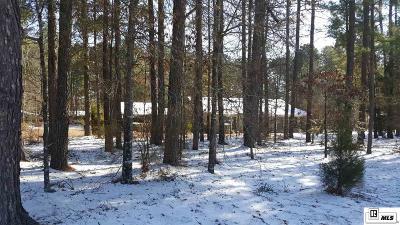 Single Family Home New Listing: 197 Turkey Creek Road