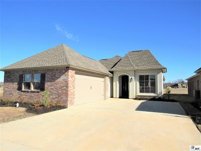 Single Family Home For Sale: 205 Lauren Grace Circle