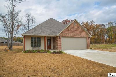 Single Family Home For Sale: 120 River Styx Drive