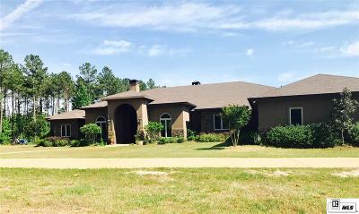 Downsville Single Family Home For Sale: 236 Weems Road