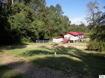 Downsville Single Family Home For Sale: 793 Lake Loop Road