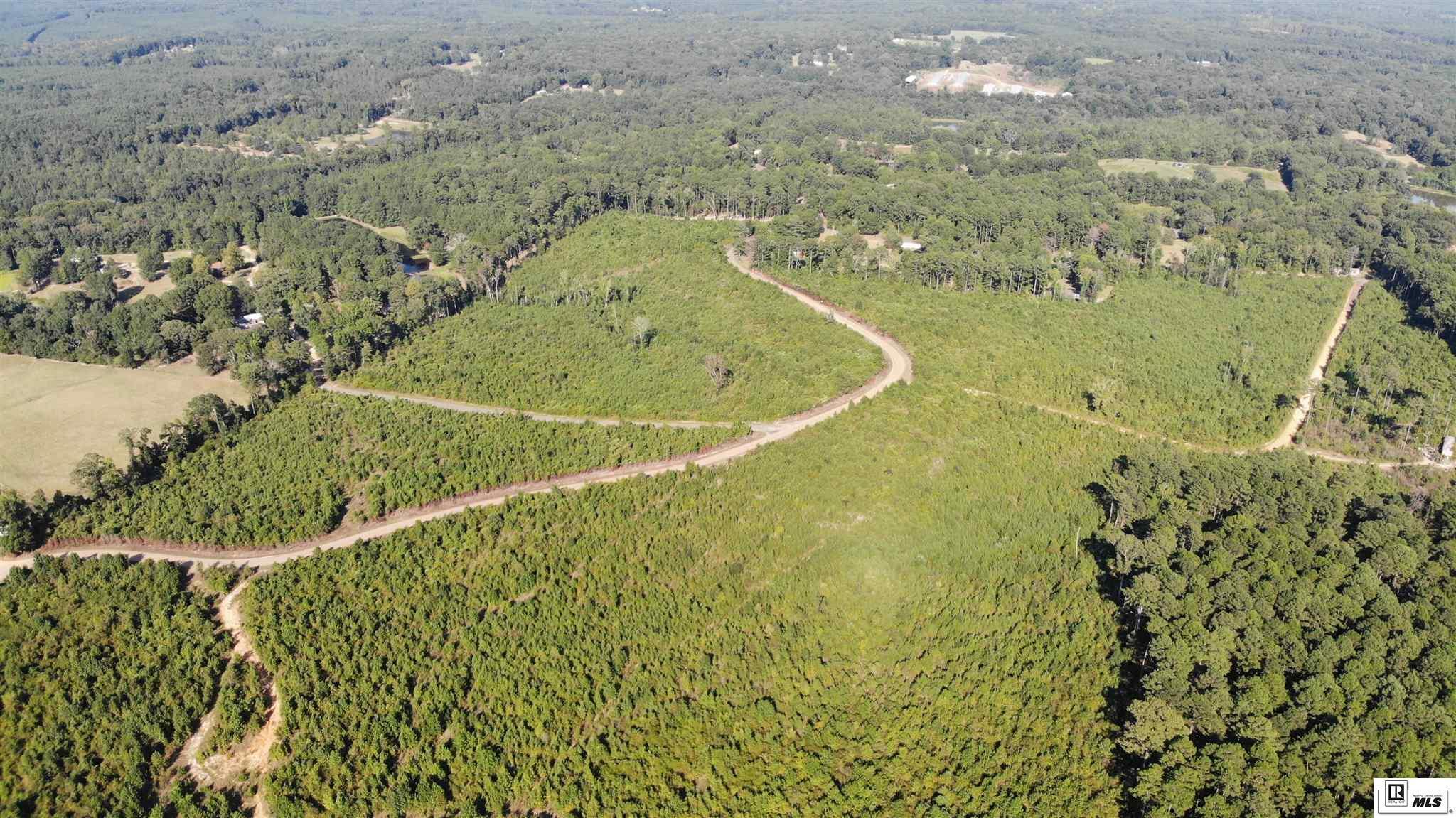 000 WEEMS ROAD, 164 N Calhoun-Pine Hills to Hwy