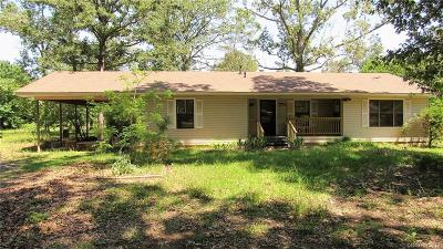 Stonewall Single Family Home For Sale: 371 Lake Road