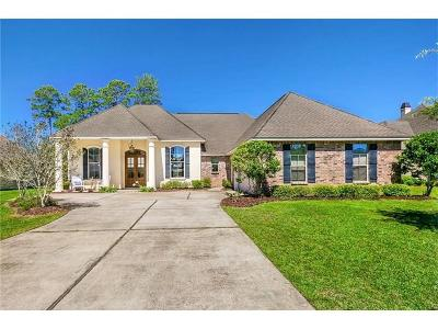 Single Family Home For Sale: 429 Belle Pointe Drive
